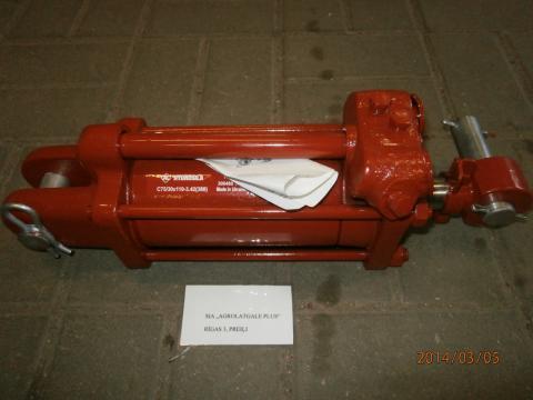 P3052706.JPG